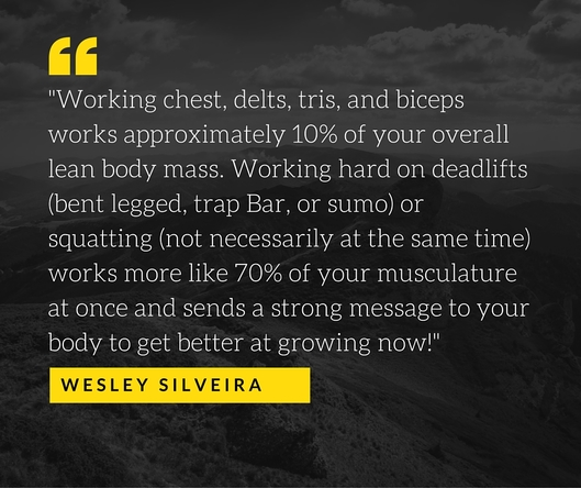 Wesley Silveira quote