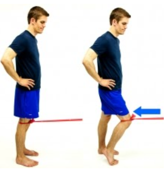 Terminal Knee Extension
