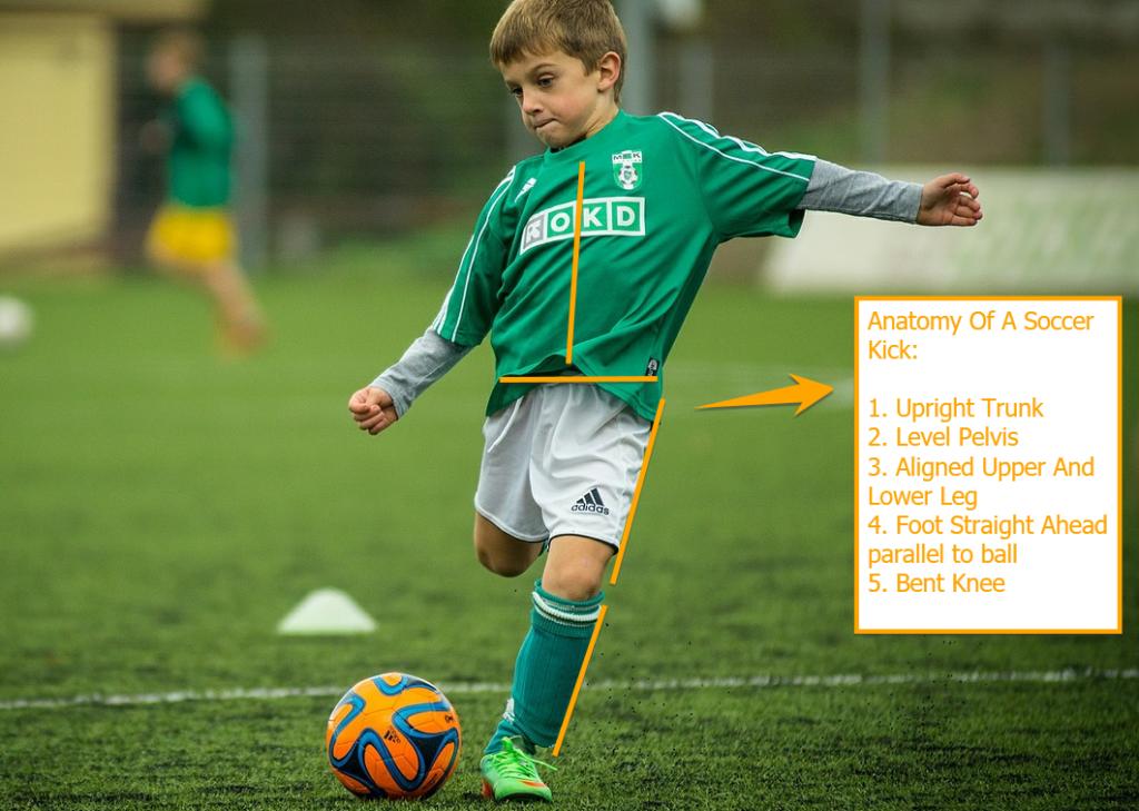 Anatomy of a Soccer Kick
