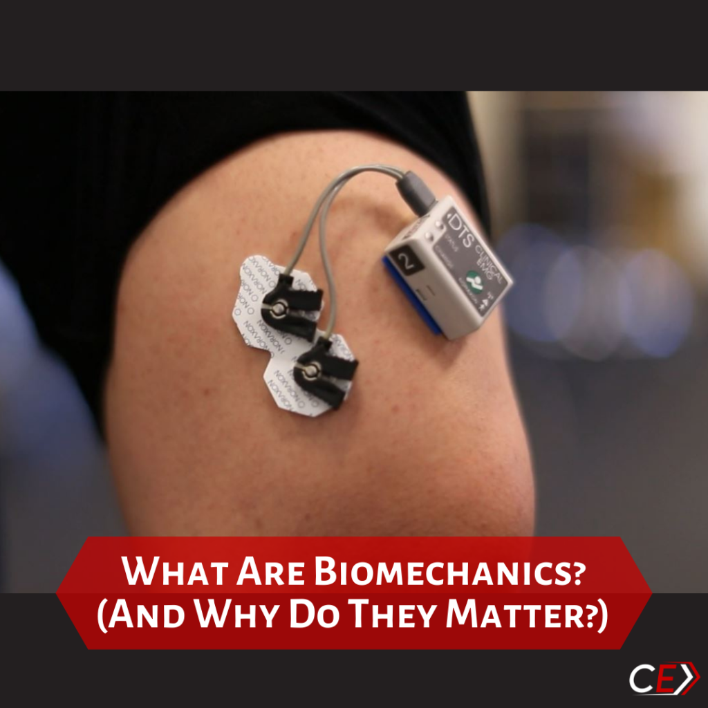 Biomechanics and Physical Therapy